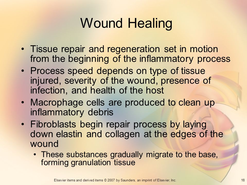 Wound Healing Tissue repair and regeneration set in motion from the beginning of the inflammatory process.