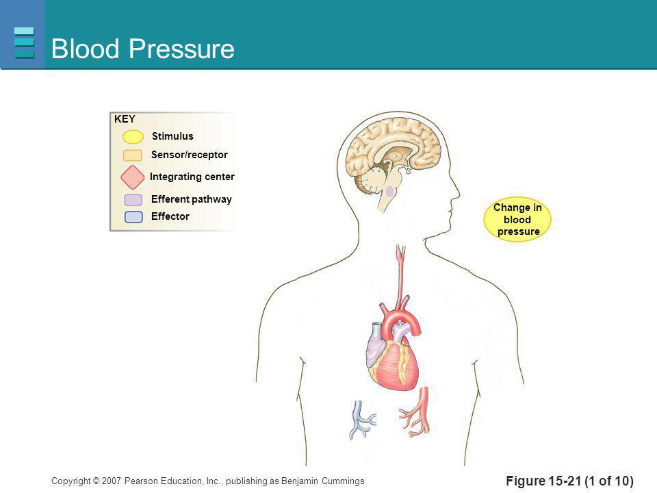 Blood Pressure Figure 15-21 (1 of 10) KEY Stimulus Sensor/receptor