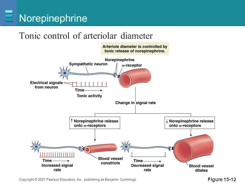 Norepinephrine Tonic control of arteriolar diameter Figure 15-12