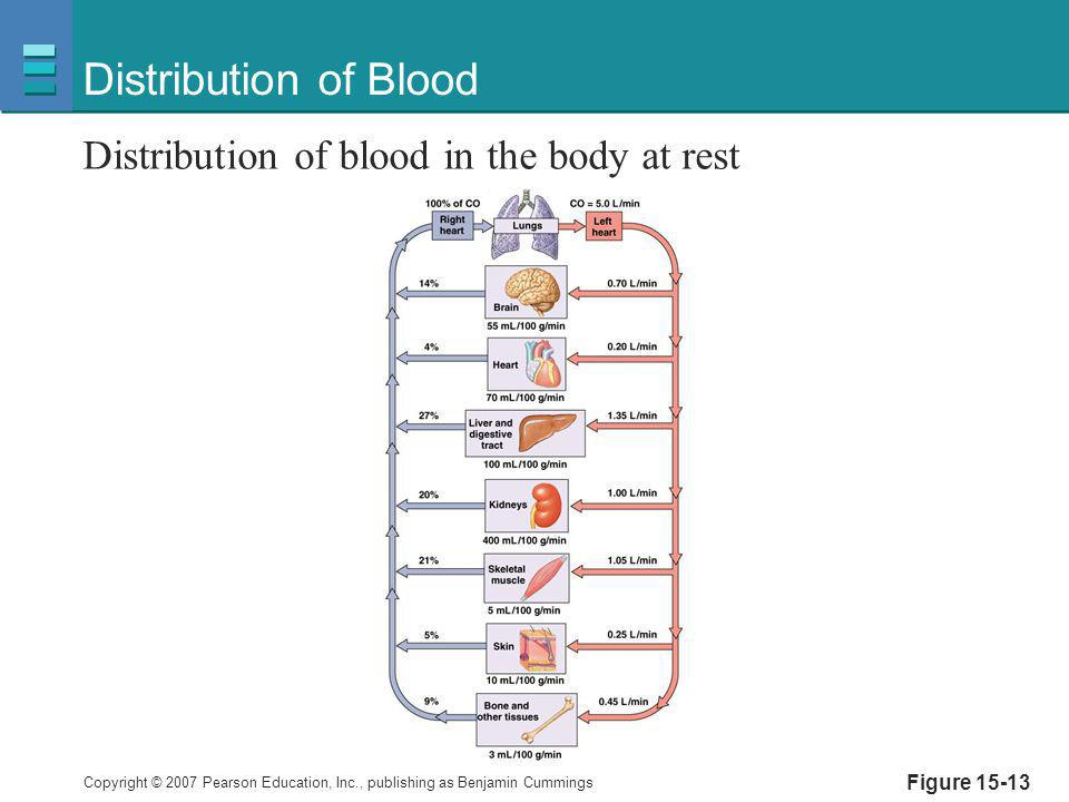 Distribution of Blood Distribution of blood in the body at rest