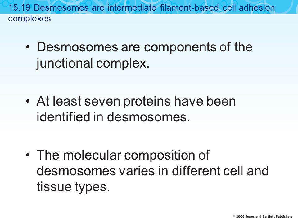 Desmosomes are components of the junctional complex.
