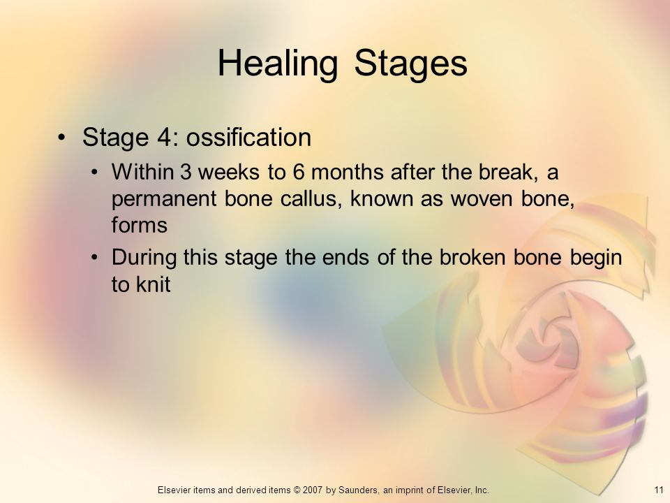 Healing Stages Stage 4: ossification