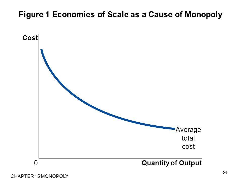 Figure 1 Economies of Scale as a Cause of Monopoly