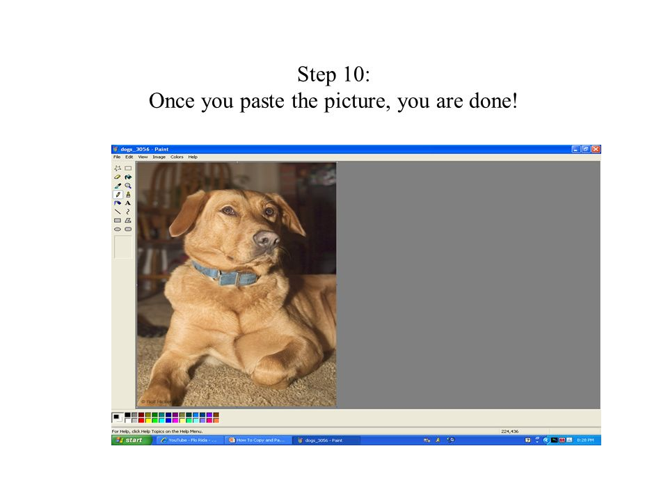 Step 10: Once you paste the picture, you are done!