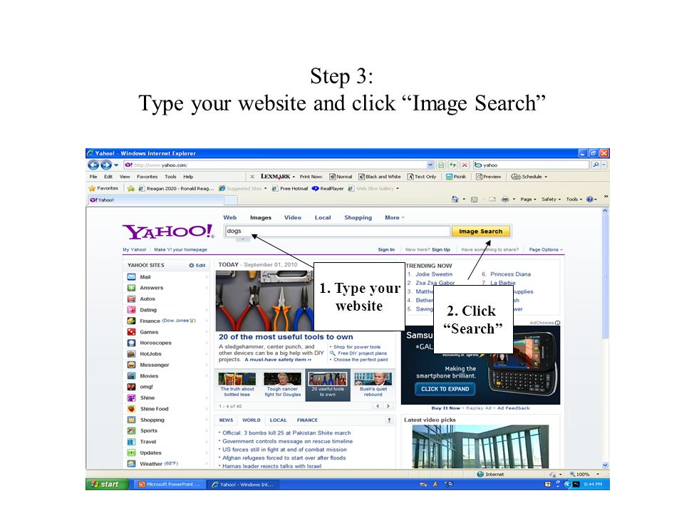 Step 3: Type your website and click Image Search