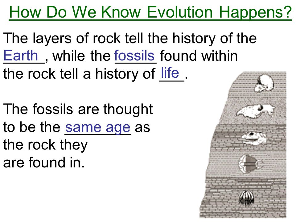 How Do We Know Evolution Happens