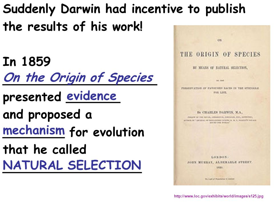 Suddenly Darwin had incentive to publish the results of his work!