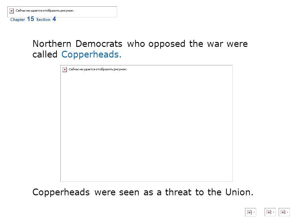 Northern Democrats who opposed the war were called Copperheads.