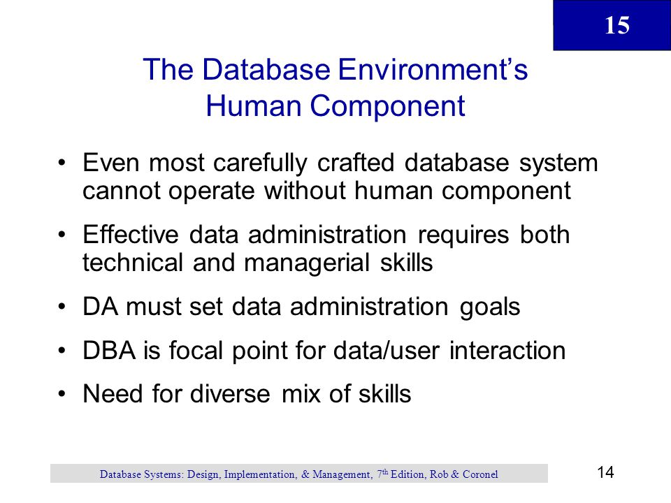 The Database Environment's Human Component