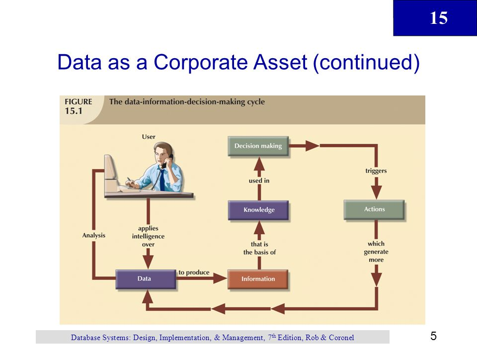 Data as a Corporate Asset (continued)