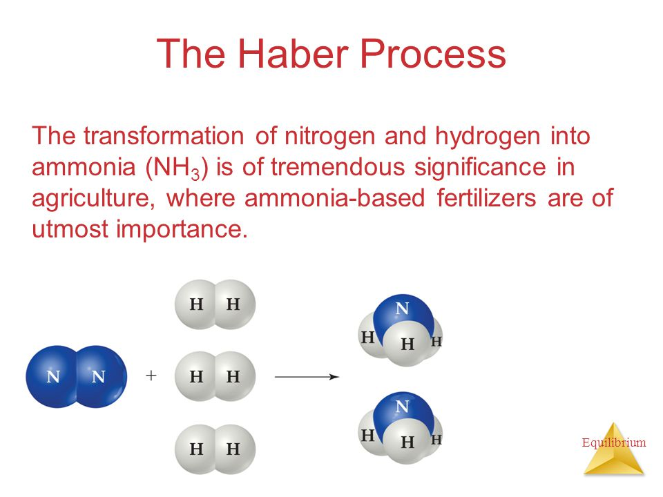 The Haber Process