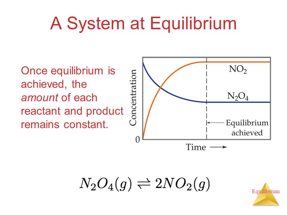 A System at Equilibrium