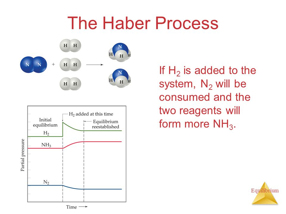 The Haber Process If H2 is added to the system, N2 will be consumed and the two reagents will form more NH3.