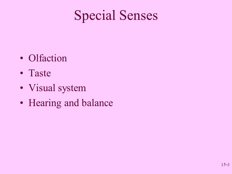 Special Senses Olfaction Taste Visual system Hearing and balance