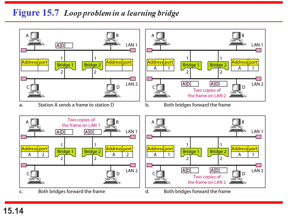 Figure 15.7 Loop problem in a learning bridge