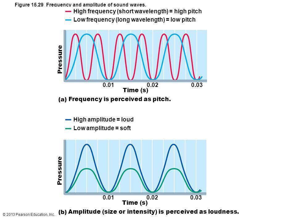 High frequency (short wavelength) = high pitch