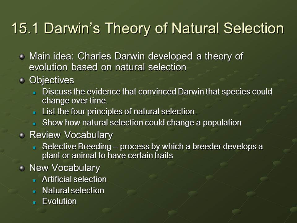 the principles of charles darwins theory of natural selection Core principles research staff he developed the concept of natural selection as a result of selection charles darwin's theory of evolution is generally.