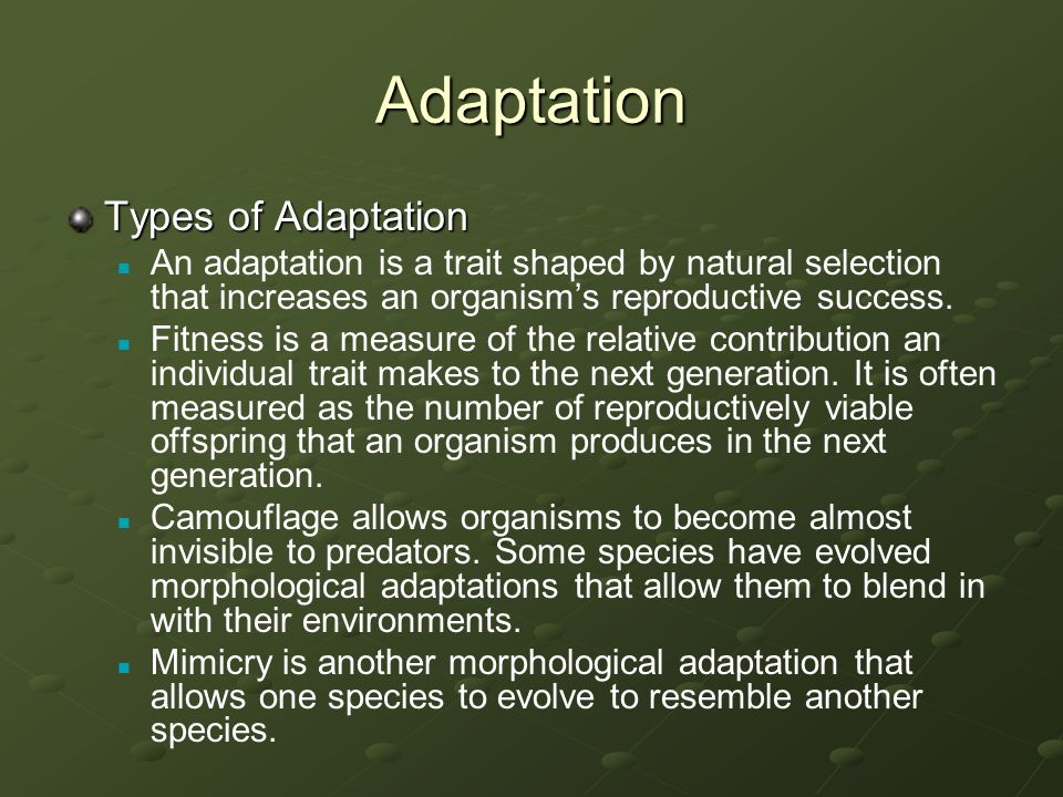 Adaptation Types of Adaptation