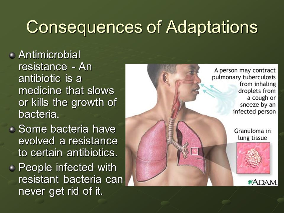 Consequences of Adaptations