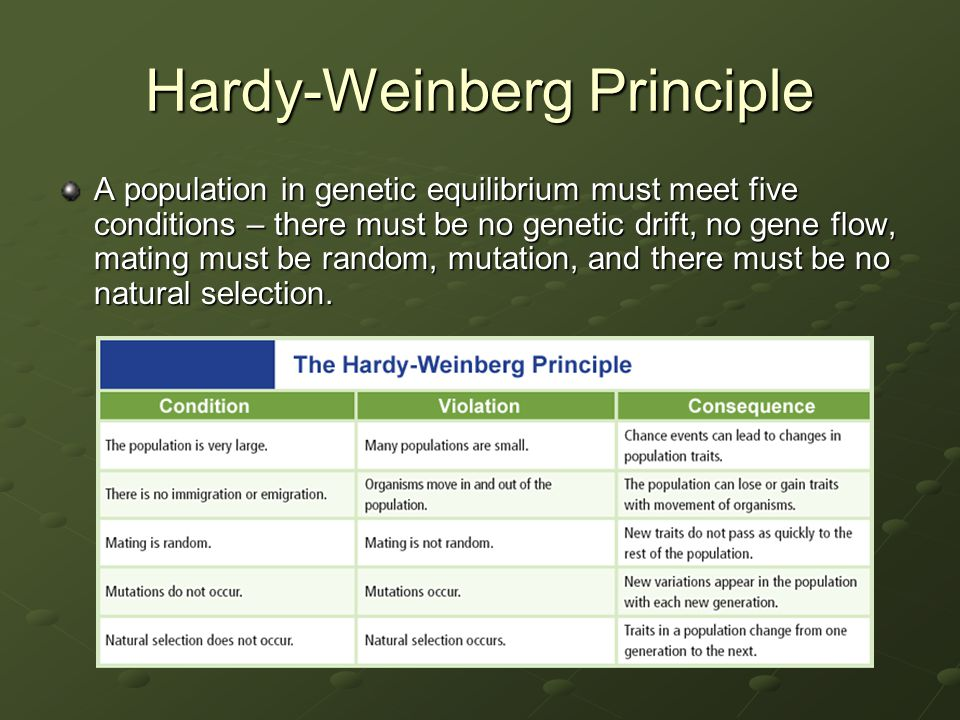 Hardy-Weinberg Principle