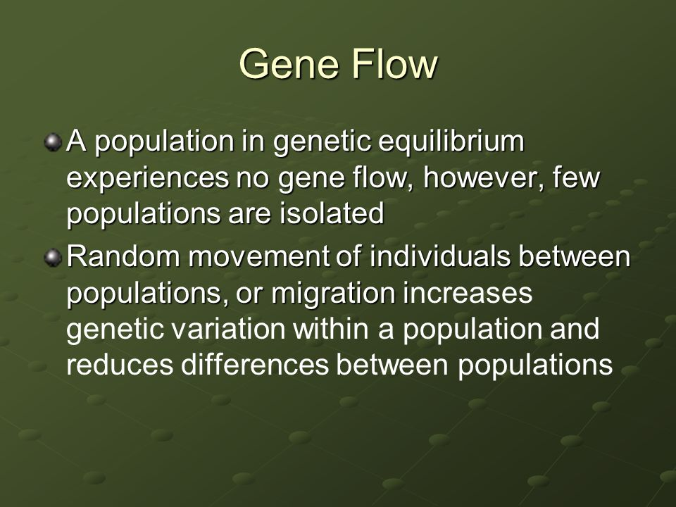 Gene Flow A population in genetic equilibrium experiences no gene flow, however, few populations are isolated.