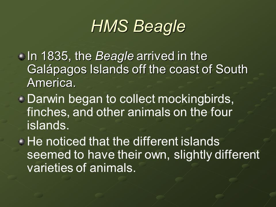HMS Beagle In 1835, the Beagle arrived in the Galápagos Islands off the coast of South America.