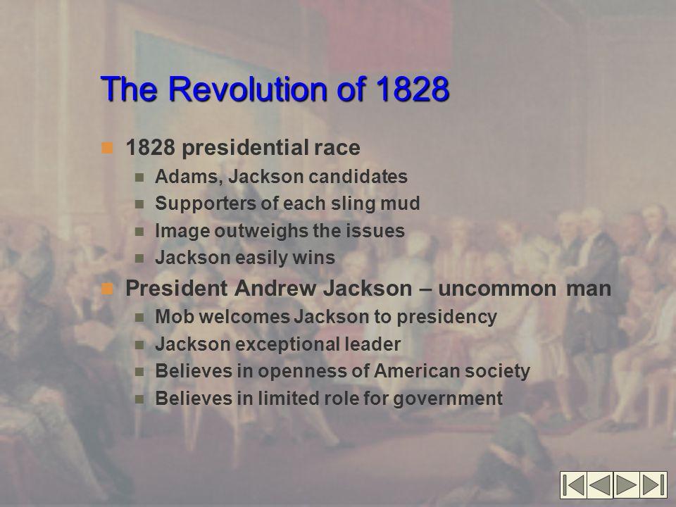 The Revolution of 1828 1828 presidential race
