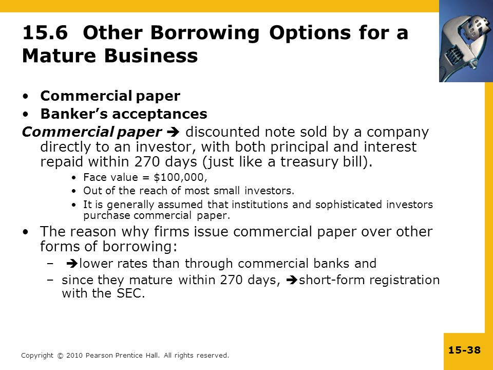 15.6 Other Borrowing Options for a Mature Business