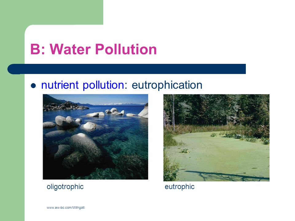 B: Water Pollution nutrient pollution: eutrophication oligotrophic