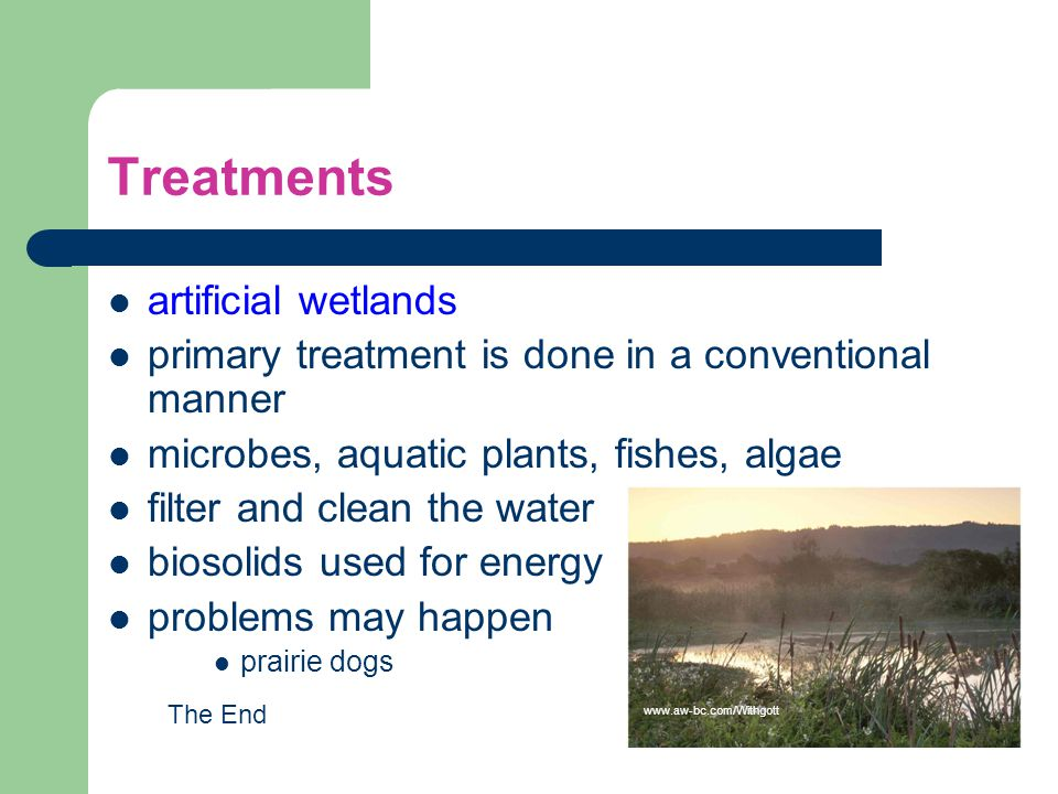 Treatments artificial wetlands
