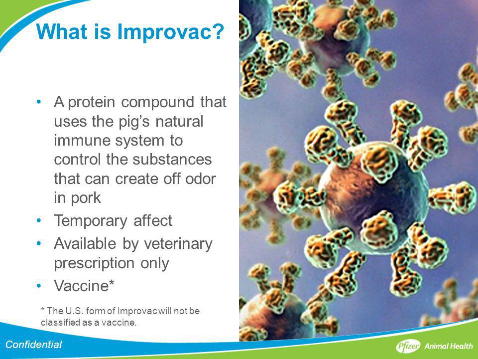 What is Improvac A protein compound that uses the pig's natural immune system to control the substances that can create off odor in pork.
