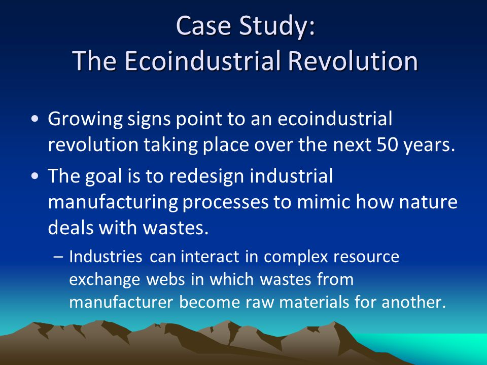 Case Study: The Ecoindustrial Revolution