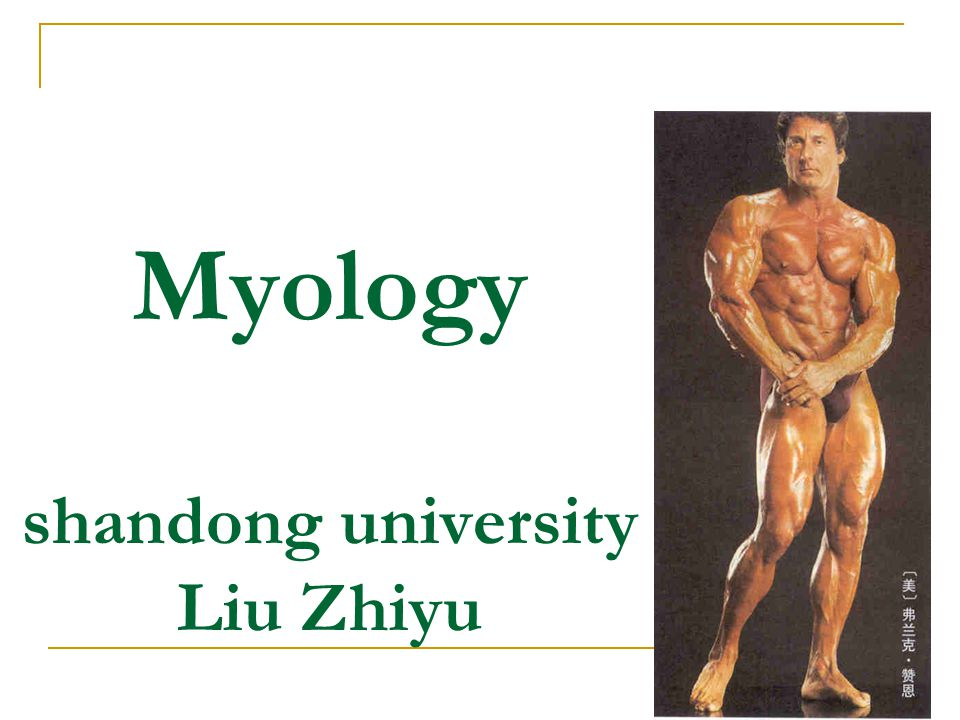 Myology shandong university Liu Zhiyu