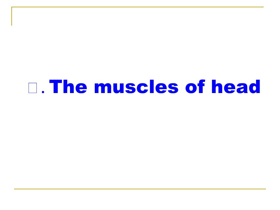 Ⅰ. The muscles of head