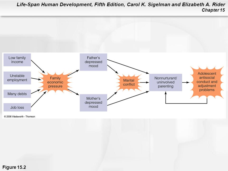 Figure 15.2 A model of the relationship among family economic stress, patterns of parenting, and adolescent adjustment.