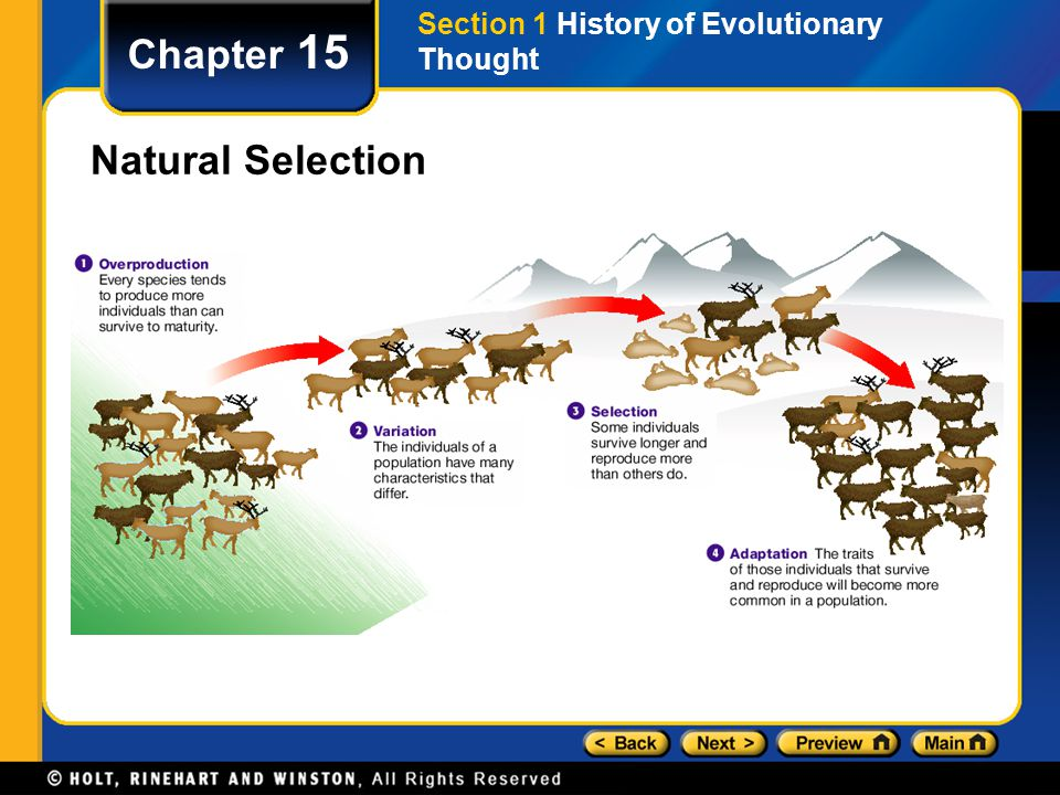 Section 1 History of Evolutionary Thought