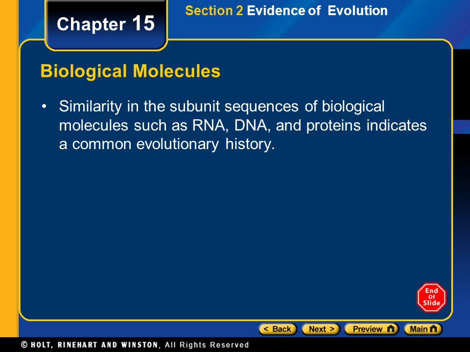 Chapter 15 Biological Molecules