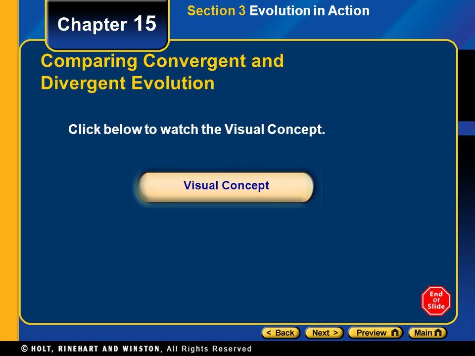 Comparing Convergent and Divergent Evolution