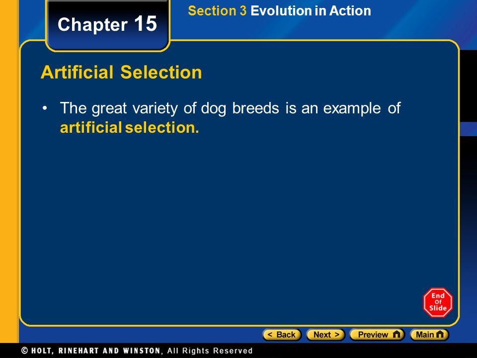 Chapter 15 Artificial Selection