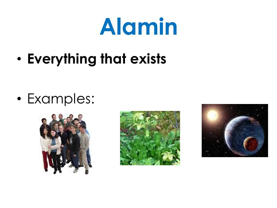 Alamin Everything that exists Examples: