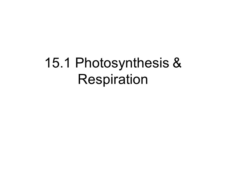 15.1 Photosynthesis & Respiration