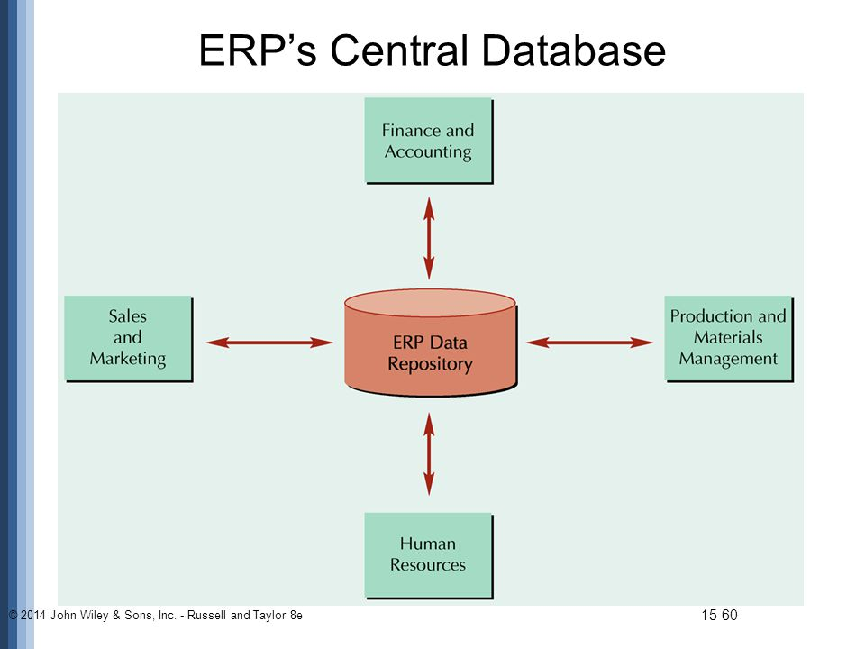ERP's Central Database