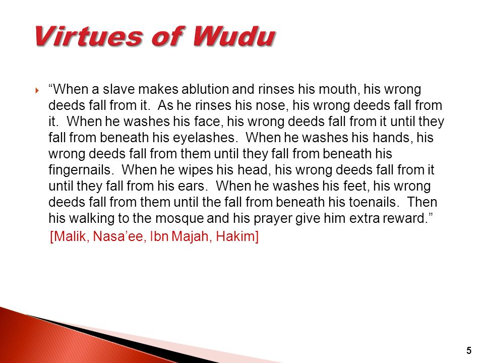 Virtues of Wudu