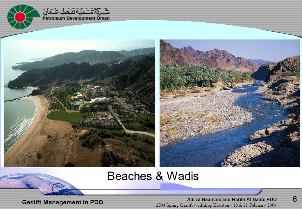 Beaches & Wadis 6