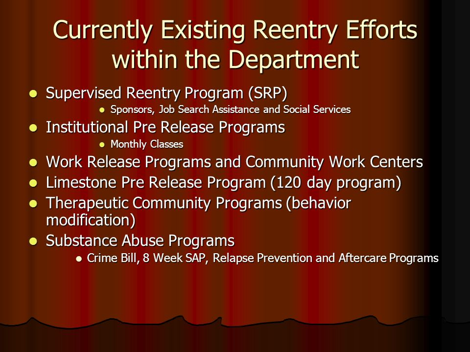 Currently Existing Reentry Efforts within the Department
