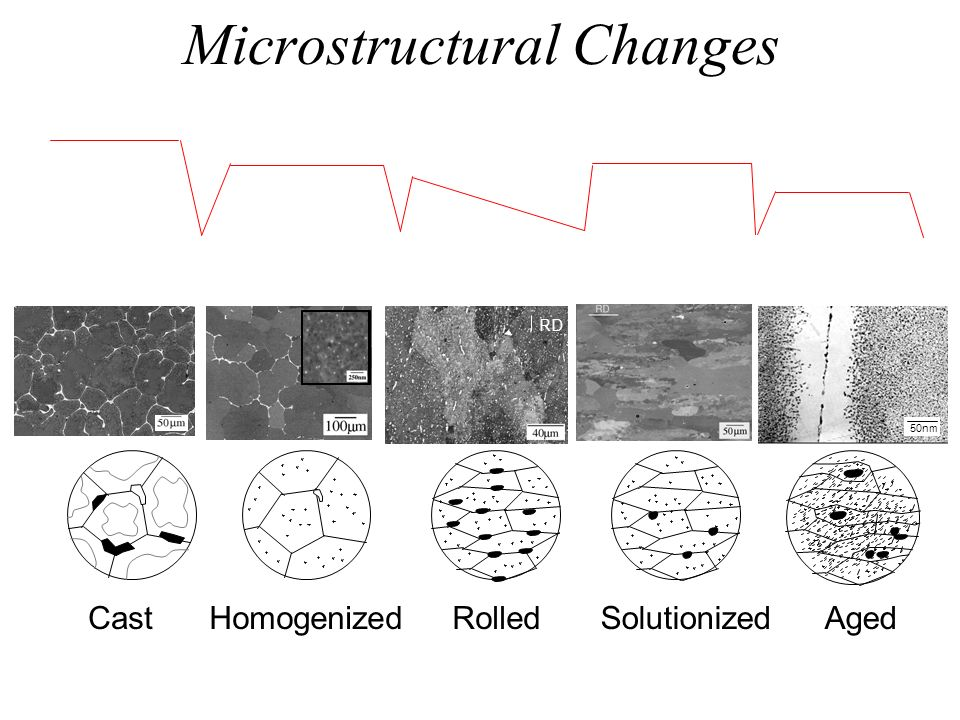 Microstructural Changes