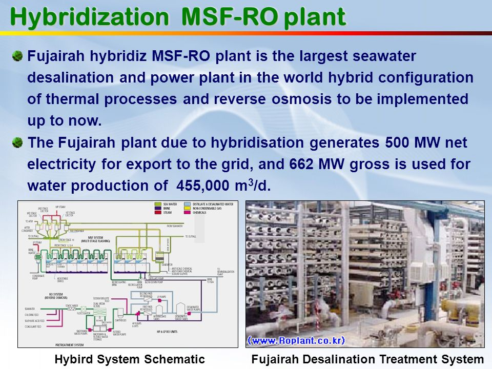 Hybridization MSF-RO plant