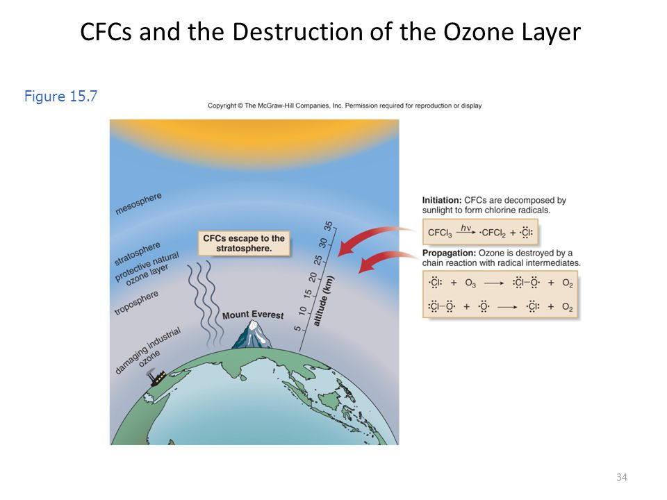 CFCs and the Destruction of the Ozone Layer