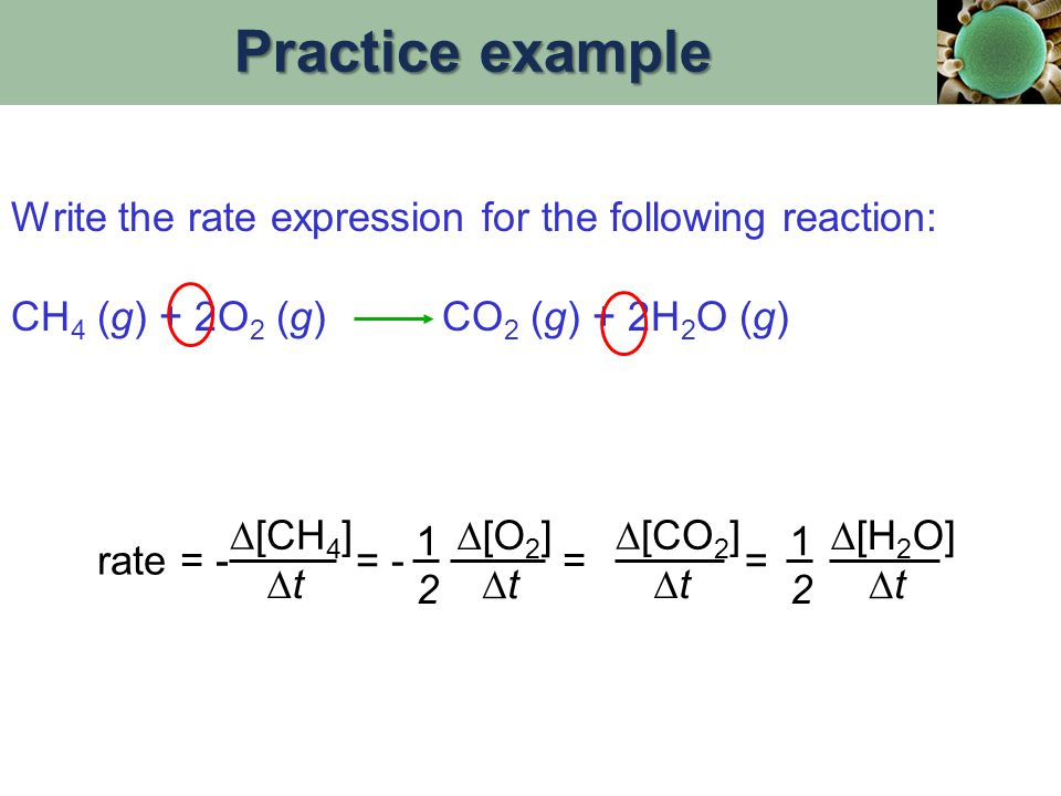 Practice example Write the rate expression for the following reaction: