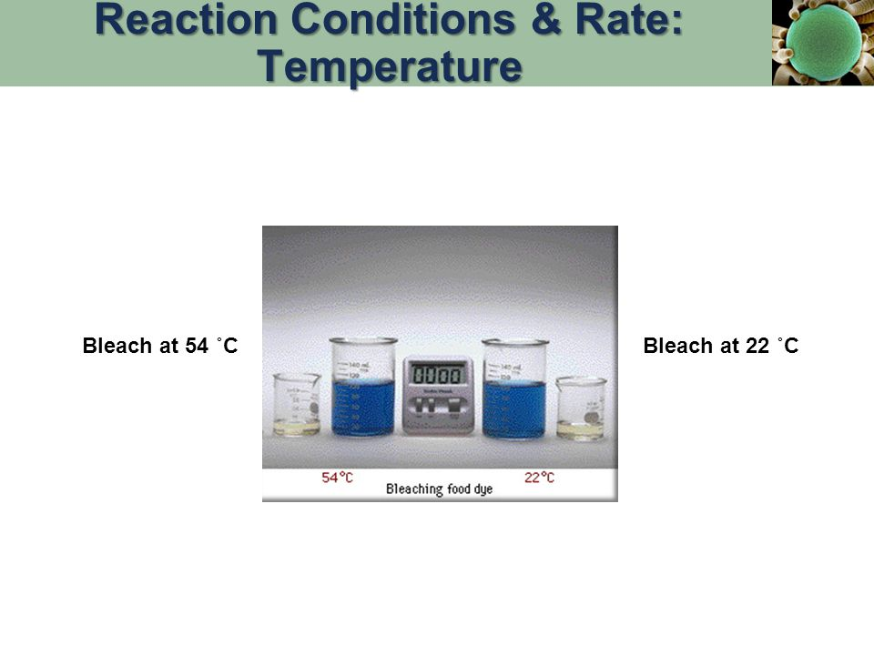 Reaction Conditions & Rate: Temperature